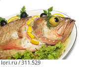 Купить «Запеченная рыба на белом фоне», фото № 311529, снято 31 мая 2008 г. (c) Павел Савин / Фотобанк Лори