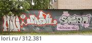 Купить «Стена гаражей с граффити», фото № 312381, снято 31 мая 2008 г. (c) Эдуард Межерицкий / Фотобанк Лори