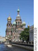 Купить «Санкт-Петербург. Собор Спаса на Крови.», фото № 313029, снято 4 июня 2008 г. (c) Александр Секретарев / Фотобанк Лори