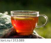 Прозрачная чашка с чаем в лучах солнца. Стоковое фото, фотограф Алина Голышева / Фотобанк Лори