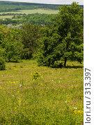 Купить «Кубанский сельский пейзаж в предгорной зоне», фото № 313397, снято 4 июня 2008 г. (c) Федор Королевский / Фотобанк Лори
