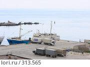 Купить «Ялта.Грузовой порт.», эксклюзивное фото № 313565, снято 2 мая 2008 г. (c) Дмитрий Неумоин / Фотобанк Лори