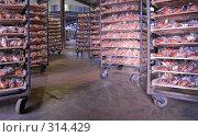 Купить «Склад хлебопекарни», фото № 314429, снято 29 октября 2006 г. (c) Сергей Байков / Фотобанк Лори