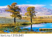 Купить «Озеро на высокогорном плато Укок в Республике Алтай», фото № 319841, снято 22 апреля 2018 г. (c) Гребенников Виталий / Фотобанк Лори