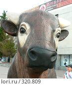Купить «Фигура коровы. Фрагмент. Караганда», фото № 320809, снято 22 сентября 2018 г. (c) Вера Тропынина / Фотобанк Лори