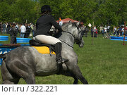 Купить «Конкур», фото № 322221, снято 12 июня 2008 г. (c) Талдыкин Юрий / Фотобанк Лори
