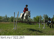 Купить «Конкур», фото № 322261, снято 12 июня 2008 г. (c) Талдыкин Юрий / Фотобанк Лори
