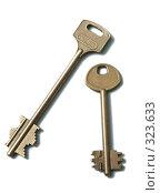 Купить «Два золотых ключа на белом фоне», фото № 323633, снято 23 апреля 2008 г. (c) Останина Екатерина / Фотобанк Лори