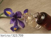 Купить «Две бутылки с маслом и цветок ириса», фото № 323709, снято 28 января 2008 г. (c) Останина Екатерина / Фотобанк Лори