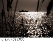 Купить «Пересекая солнечный свет», фото № 325033, снято 14 мая 2007 г. (c) Ева Монт / Фотобанк Лори