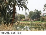 Купить «Рай», фото № 325165, снято 8 марта 2008 г. (c) Бондаренко Сергей / Фотобанк Лори