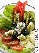 Купить «Зеленый витаминный салат на блюде  в ресторане. Крупный план», фото № 326473, снято 13 июня 2008 г. (c) Татьяна Белова / Фотобанк Лори