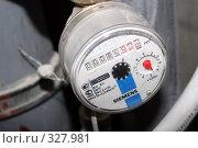 Купить «Счетчик расхода холодной  воды», эксклюзивное фото № 327981, снято 18 июня 2008 г. (c) Ирина Терентьева / Фотобанк Лори