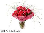 Купить «Букет тюльпанов», фото № 328229, снято 20 января 2008 г. (c) Павел Коновалов / Фотобанк Лори