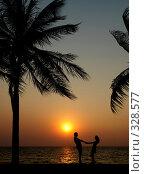 Купить «Пара на закате. Пейзаж», фото № 328577, снято 21 февраля 2018 г. (c) Гладских Татьяна / Фотобанк Лори