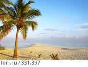 Купить «Вечерний тропический пляж», фото № 331397, снято 10 декабря 2018 г. (c) М / Фотобанк Лори