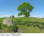 Купить «Летний день на о.Кижи.», фото № 334413, снято 17 июня 2008 г. (c) Людмила Жмурина / Фотобанк Лори