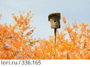 Купить «Скворечник в осеннем саду», фото № 336165, снято 18 мая 2008 г. (c) Евгений Захаров / Фотобанк Лори