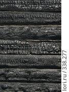 Купить «Сгоревшая изба, фон из обгоревших брёвен», фото № 338277, снято 18 июня 2008 г. (c) Талдыкин Юрий / Фотобанк Лори