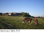Купить «Бабушка гонит корову», фото № 341717, снято 18 июня 2008 г. (c) Талдыкин Юрий / Фотобанк Лори