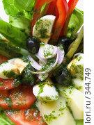 Купить «Салат из свежих овощей. Крупный план», фото № 344749, снято 13 июня 2008 г. (c) Татьяна Белова / Фотобанк Лори