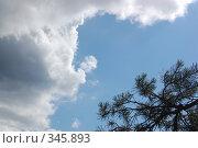 Купить «Небо», фото № 345893, снято 29 июня 2008 г. (c) Алексей Желтов / Фотобанк Лори
