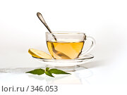 Купить «Чашка чая», фото № 346053, снято 22 июля 2005 г. (c) Кравецкий Геннадий / Фотобанк Лори