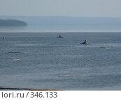 Купить «Усть-Илимское водохранилище», фото № 346133, снято 24 июня 2008 г. (c) Юрий Мурзич / Фотобанк Лори