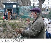Кормление птиц (2006 год). Редакционное фото, фотограф Устинов Геннадий / Фотобанк Лори