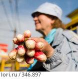 Купить «Торговка», фото № 346897, снято 15 июня 2008 г. (c) Сергей Лаврентьев / Фотобанк Лори