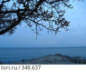 Купить «Вечернее море», фото № 348637, снято 7 мая 2008 г. (c) Вера Беляева / Фотобанк Лори