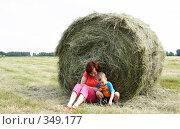 Купить «Поле с сеном», эксклюзивное фото № 349177, снято 12 июня 2008 г. (c) Дмитрий Неумоин / Фотобанк Лори