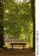 Купить «Скамейка у озера», фото № 349421, снято 5 июля 2008 г. (c) Екатерина Соловьева / Фотобанк Лори