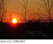 Вечернее солнце. Стоковое фото, фотограф Александр Мещеряков / Фотобанк Лори