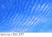 Купить «Голубая волна», фото № 351377, снято 12 июня 2008 г. (c) Анатолий Теребенин / Фотобанк Лори
