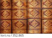 Купить «Фон из старинных книг», фото № 352865, снято 5 июля 2008 г. (c) Майя Крученкова / Фотобанк Лори