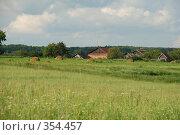Купить «Деревенский пейзаж», фото № 354457, снято 5 июля 2008 г. (c) Елена Бринюк / Фотобанк Лори
