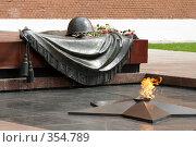 Купить «Могила Неизвестного солдата - мемориальный архитектурный ансамбль в Москве, в Александровском саду, у стен Кремля», эксклюзивное фото № 354789, снято 20 июня 2008 г. (c) Дмитрий Неумоин / Фотобанк Лори