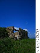 Купить «Печаль», фото № 355797, снято 7 июля 2008 г. (c) Коволенко Александра Сергеевна / Фотобанк Лори