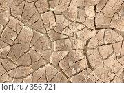 Купить «Сухая земля», фото № 356721, снято 16 августа 2018 г. (c) Олег / Фотобанк Лори