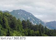 Купить «Северный Кавказ», фото № 360873, снято 11 июля 2008 г. (c) Влад / Фотобанк Лори