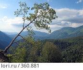 Купить «Северный Кавказ», фото № 360881, снято 11 июля 2008 г. (c) Влад / Фотобанк Лори