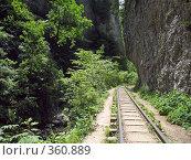Купить «Гуамское ущелье», фото № 360889, снято 13 июля 2008 г. (c) Влад / Фотобанк Лори