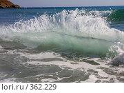 Купить «Волна на Черном море в Болгарии», фото № 362229, снято 14 июля 2008 г. (c) Галина Бурцева / Фотобанк Лори