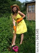 Сбор молодой картошки, эксклюзивное фото № 364045, снято 17 июля 2008 г. (c) Ирина Терентьева / Фотобанк Лори