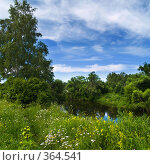 Купить «Летний пейзаж с рекой и небом», фото № 364541, снято 1 июля 2008 г. (c) Алексей Пантелеев / Фотобанк Лори