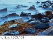 Купить «Море, вечер, прибой», фото № 365109, снято 4 июля 2008 г. (c) Иван Сазыкин / Фотобанк Лори