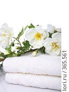 Купить «Банные полотенца», фото № 365561, снято 16 мая 2008 г. (c) Pshenichka / Фотобанк Лори