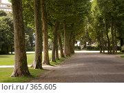 Аллея парка в Брюсселе (2008 год). Стоковое фото, фотограф Эдуард Цветков / Фотобанк Лори