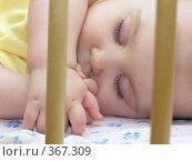 Купить «Спящий в кроватке ребенок», фото № 367309, снято 29 июля 2005 г. (c) Losevsky Pavel / Фотобанк Лори